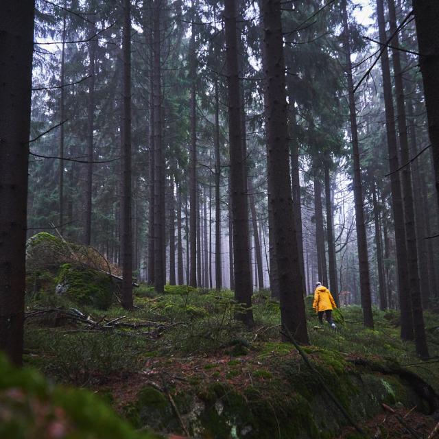 Durch das Felsenlabyrinth bei Luisenburg im Fichtelgebirge