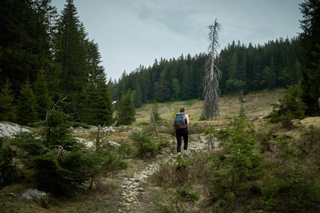 Scheuenalpe Allgäu Nagelfluhette Wanderung