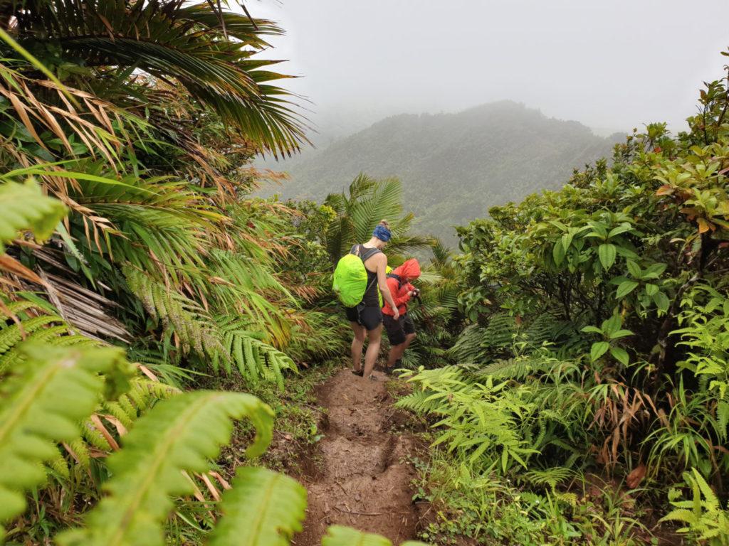 Wanderung im Regen auf den Mount Qua Qua, karibikkreuzfahrt packliste
