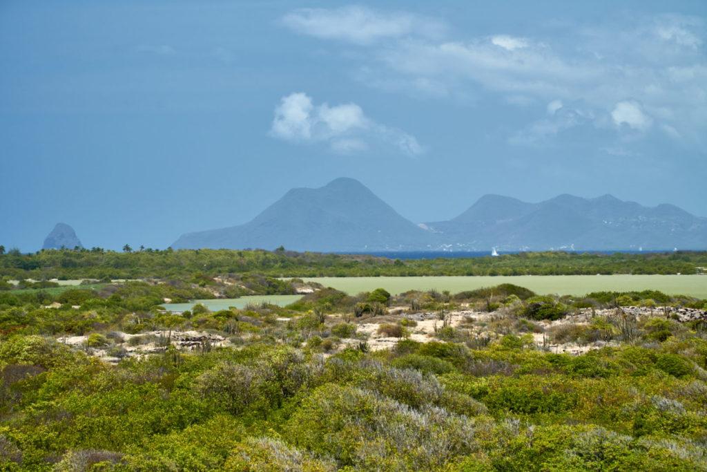 Karibikkreuzfahrt TUI Cruises Erfahrungsbericht Martinique Les Salines