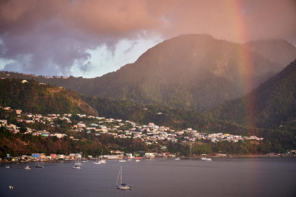 Kreuzfahrt Mein Schiff 5 kleine Antillen Dominica Wanderinsel Urwald