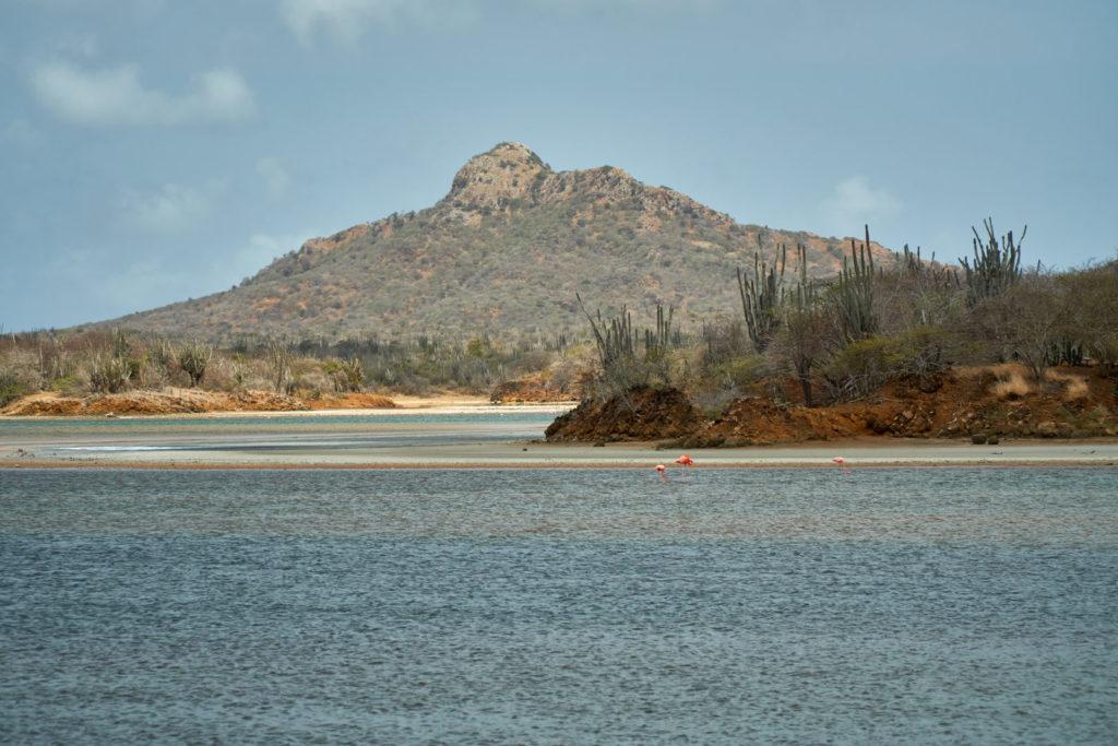 Kreuzfahrt Mein Schiff 5 kleine Antillen Inseln unter dem Winde ABC Inseln