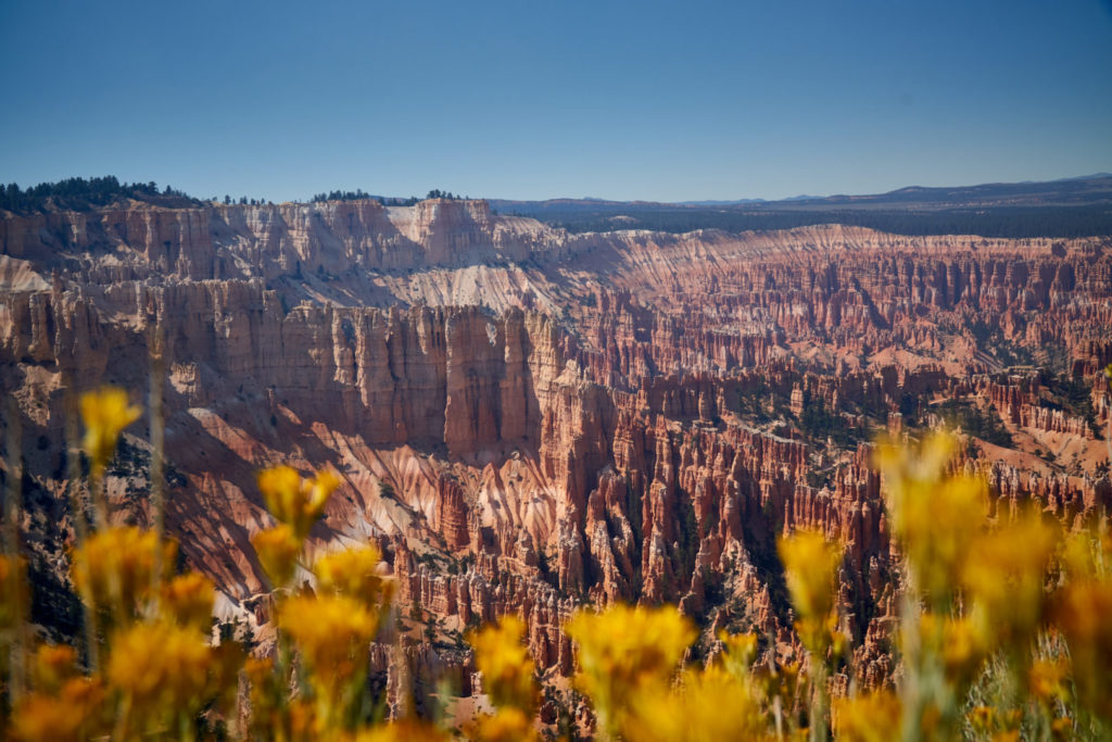 Die perfekte USA Roadtrip Route durch den Südwesten: Bryce Canyon Queens Garden