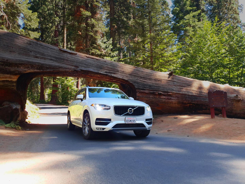 Roadtrip USA Mietwagen Guide: Unser Mietwagen im Sequoia Nationalpark unter einem riesigen Baumstamm.