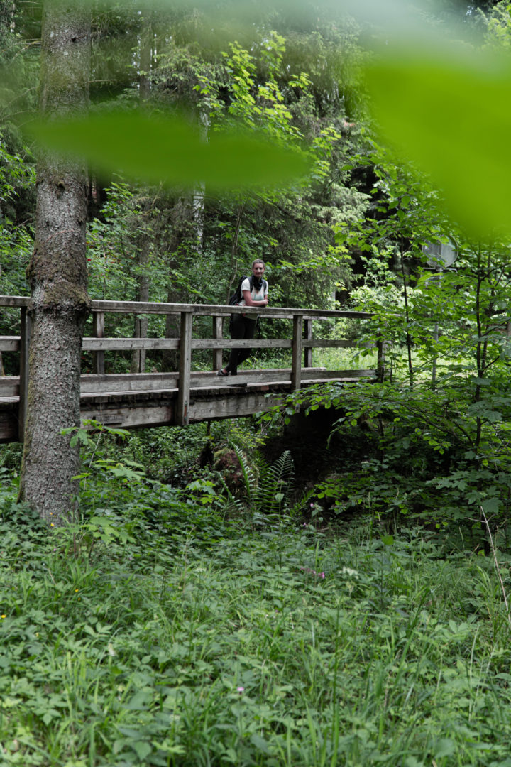 Rundwanderung Schwäbischer Wald bei Welzheim und Alfdorf über Hägelesklinge und Brunnenklinge