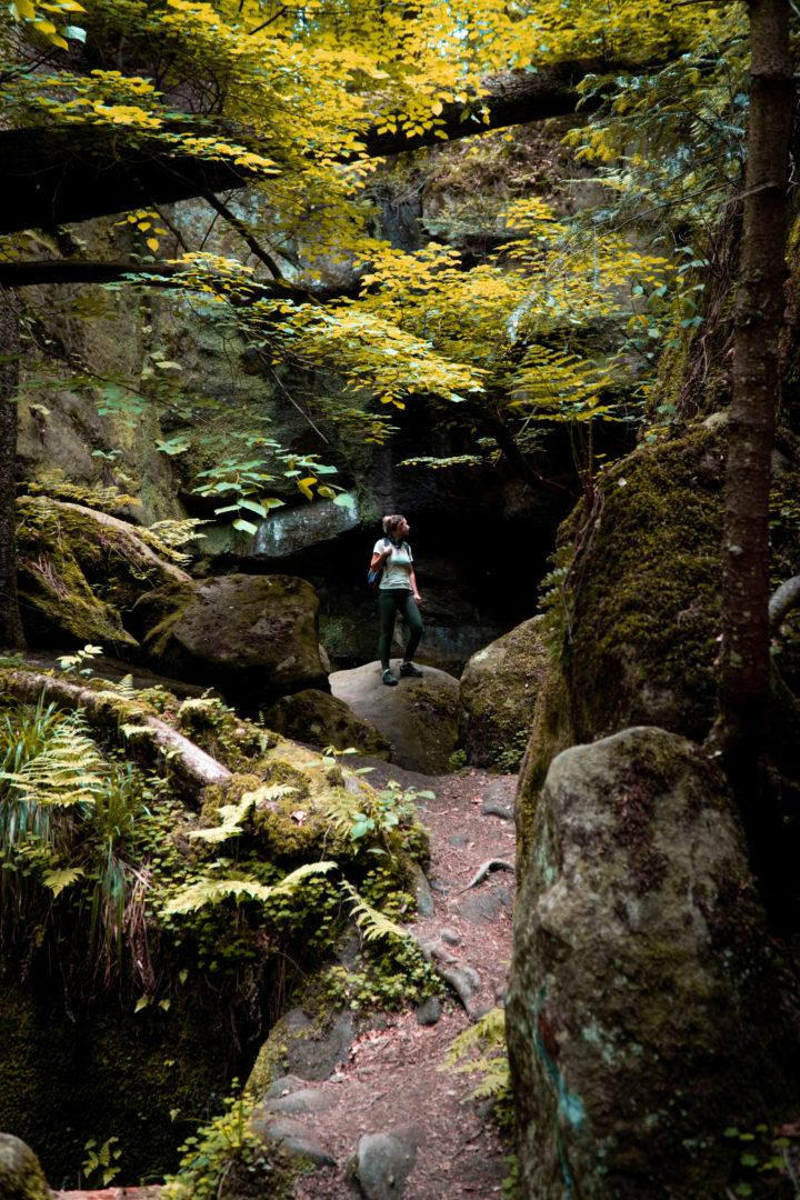 Brunnenklinge Schwäbischer Wald