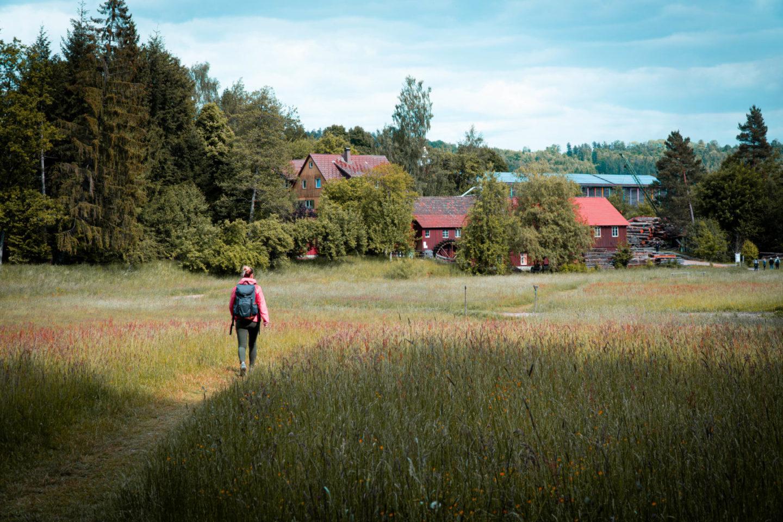 Mühlenweg durch den Schwäbisch Fränkischen Wald bei Alfdorf und WElzheim im Rems Murr Kreis, Rundwanderung