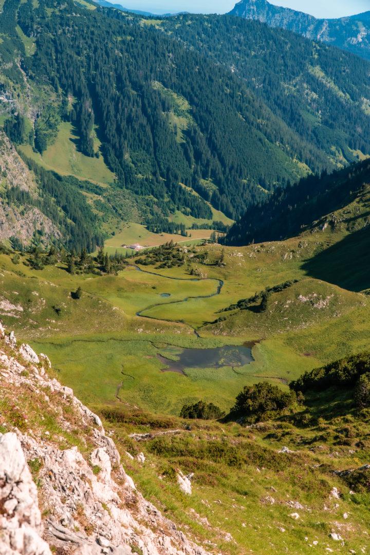 Alpenlandschaft mit Fluss und Wiesen in den allgäuer Alpen.