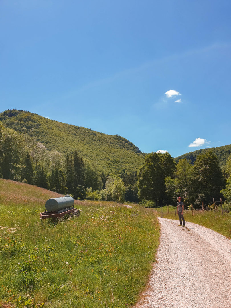 Wanderweg über Blumenwiesen von der Traufganghütte Brunnental über die Hossinger Leiter.