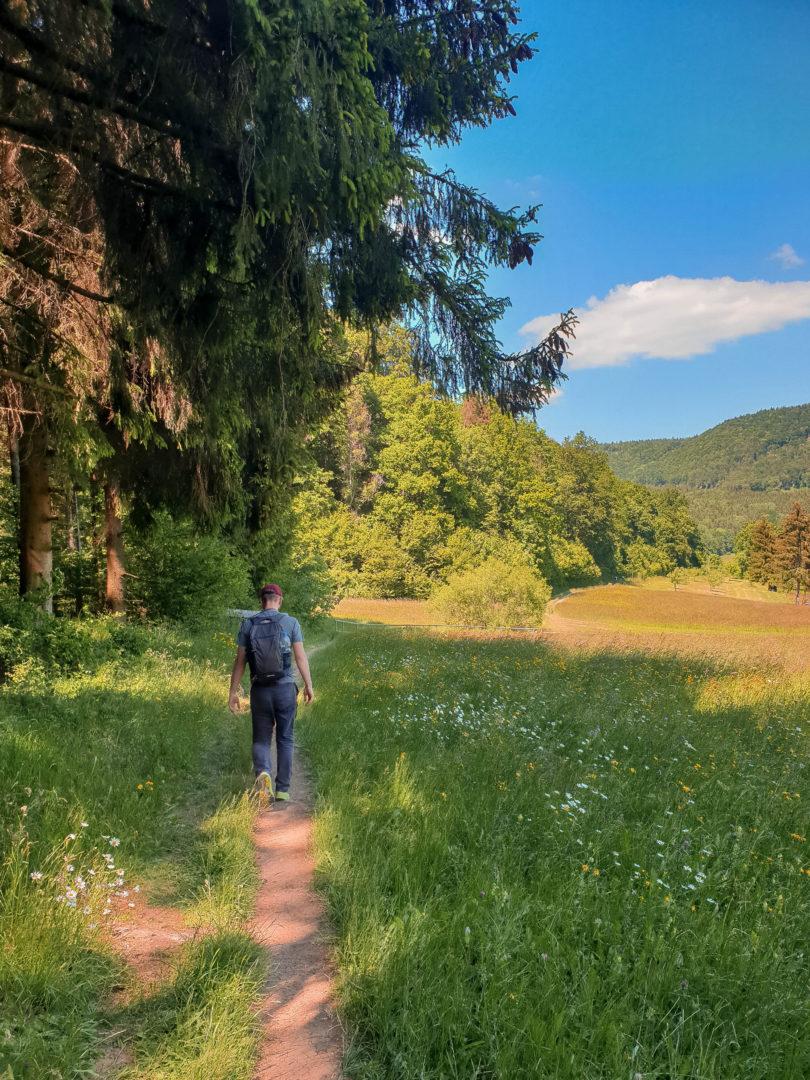 Wanderer am Wiesenrand in der Schwäbischen Alb auf dem Weg zur traufganghütte Brunnental.