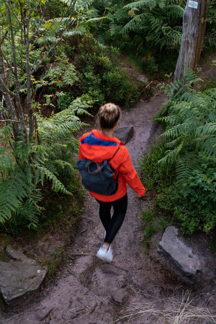 Wanderer im Hochmoor des Lotharpfades im Schwarzwald an der Schwarzwaldhochstraße.