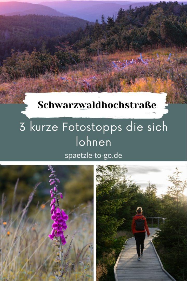 Pinterest design 3 Fotostopps an der Schwarzwaldhochstraße