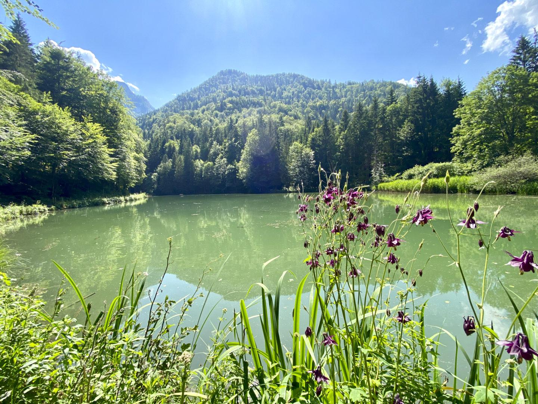 Beliebtes Ausflugsziel am Chiemsee: Der Rudersburger See am Schmugglerweg.