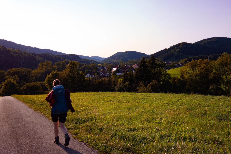 Blick über Wiese nach Achdorf in der Abendsonne.
