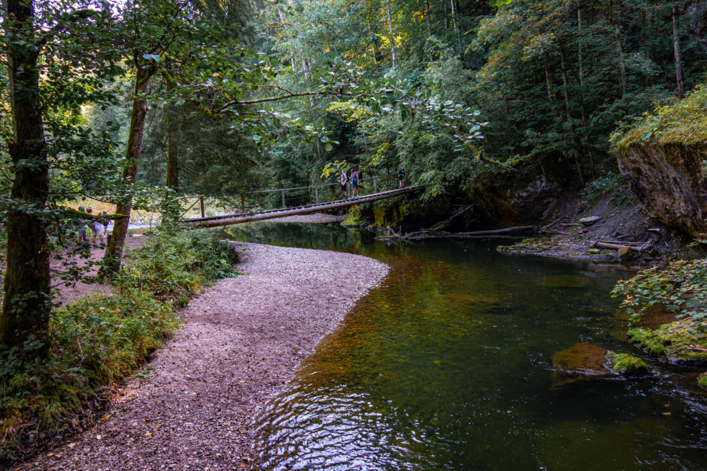 Trekking auf dem Schluchtensteig im Schwarzwald - Kanadiersteg.
