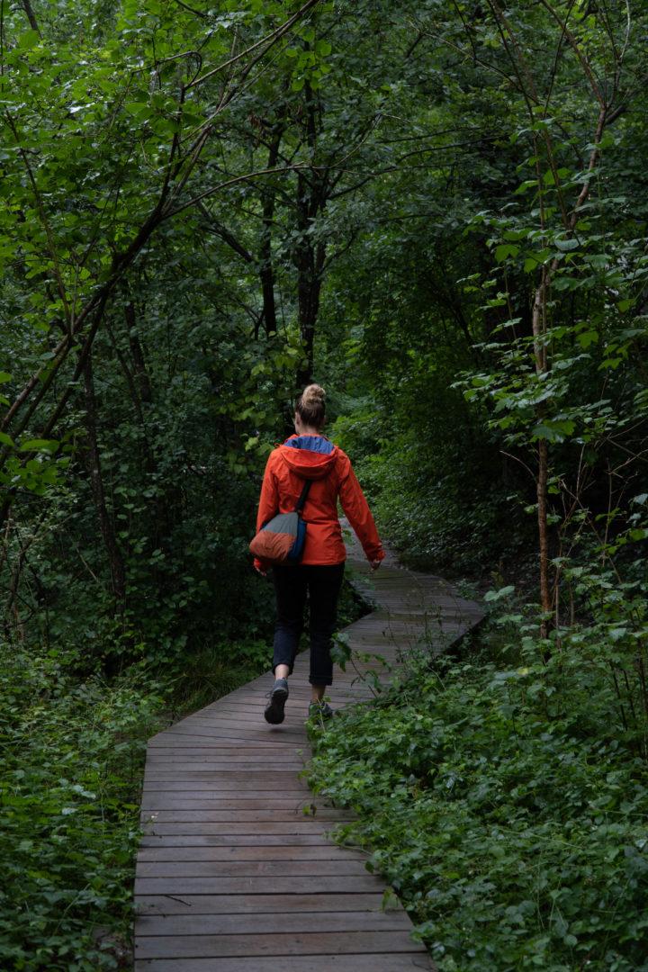 Auwaldpfad im Allgäu - Ausflugsziel bei Regen