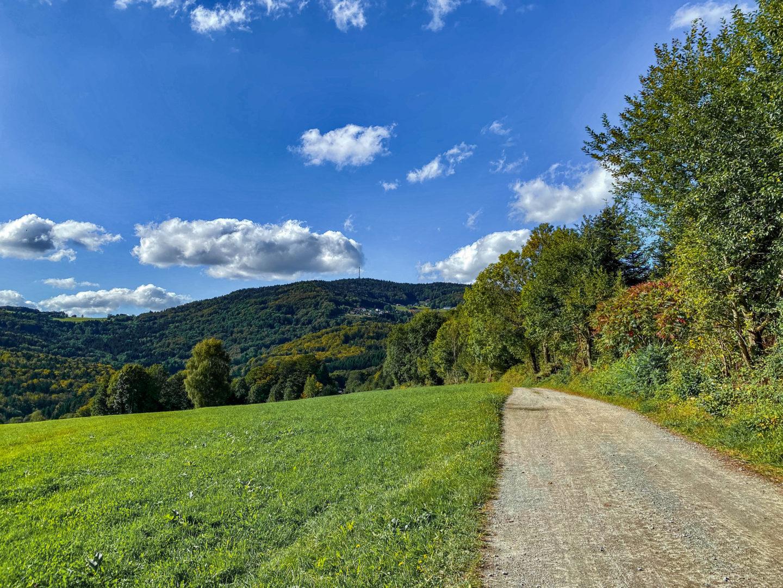 Die schönsten Herbstwanderungen im Bayerischen Wald.
