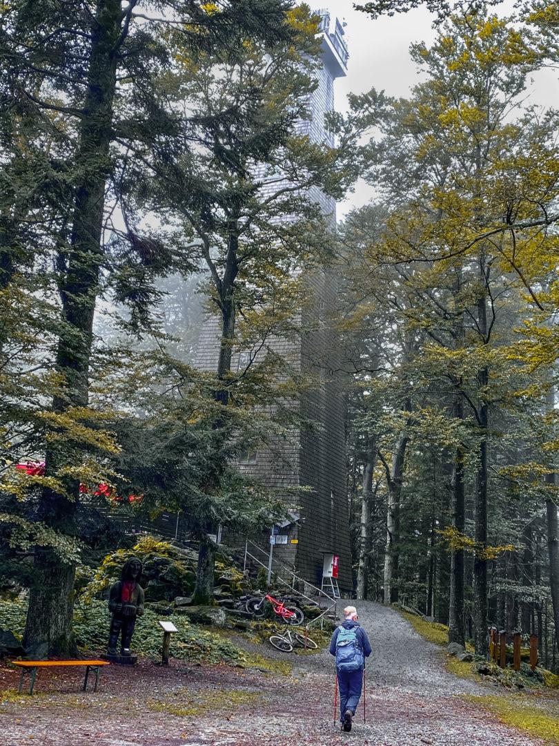 Wanderung im Herbst zum Brotjacklriegel im Bayerischen Wald.