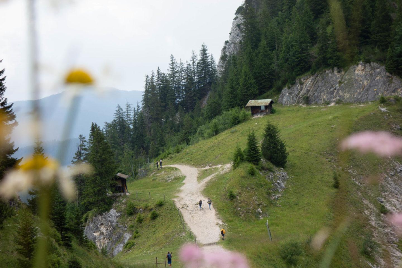 Wanderung auf den Tegelberg mit Blick auf Almwiesen bei Regen.