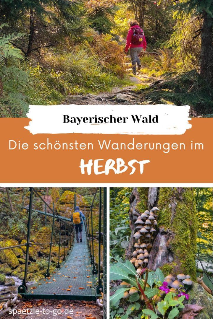 Herbstwandern im Bayerischen Wald - Die schönsten Touren