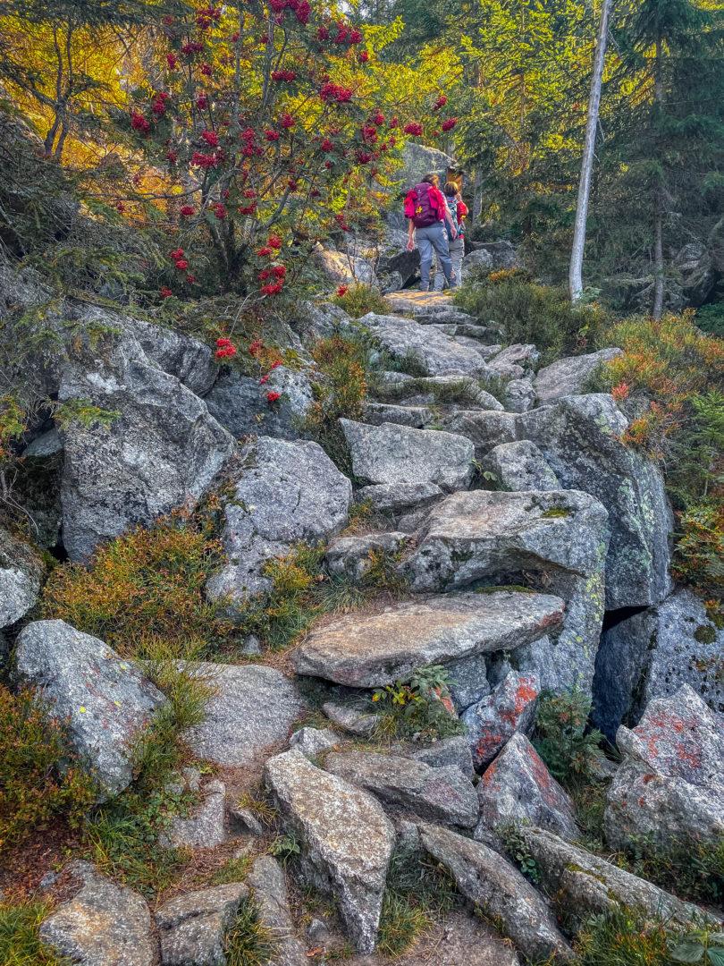Der Lusengipfel im Herbst: Aufsteig über die Himmelsleiter