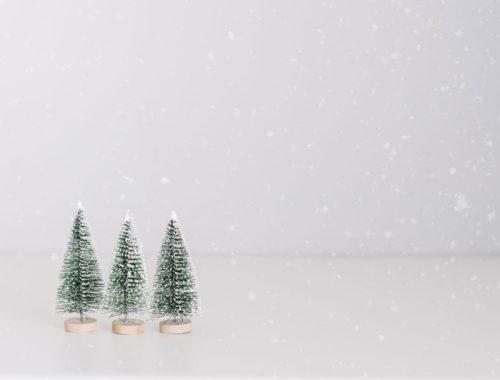 nachhaltige_Geschenkideen