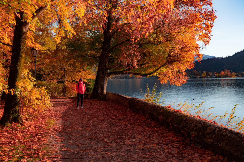 Goldener Herbst am Tegernsee - Traumziel in Bayern.
