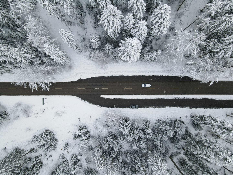 Schneeschuhwandern rund um Kniebis