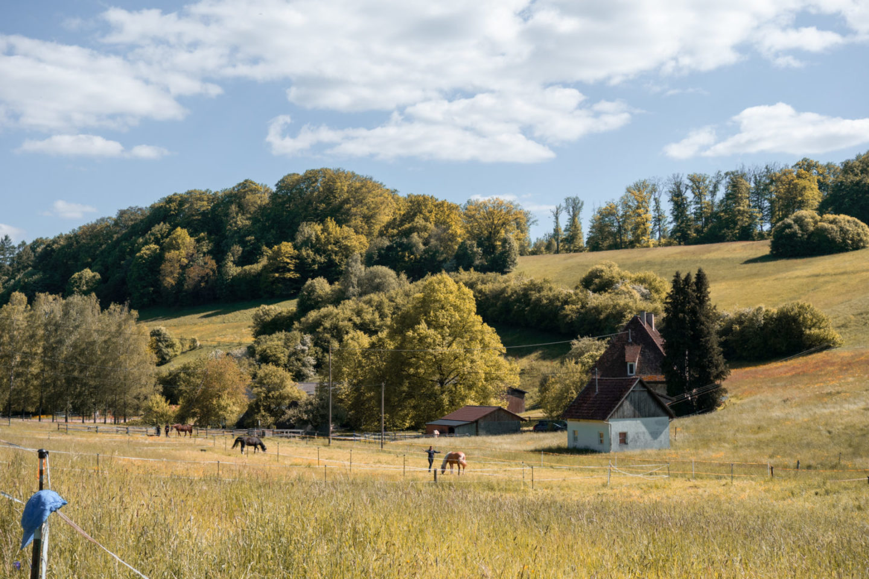 Pferdehof im Siebenmühlental